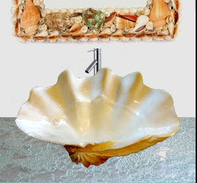 Giant Clams Shells Sinks Clean